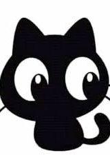Hệ Thống Mèo Đen
